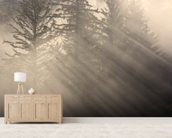 Morning Rays Shine Through the Mist wallpaper mural living room preview