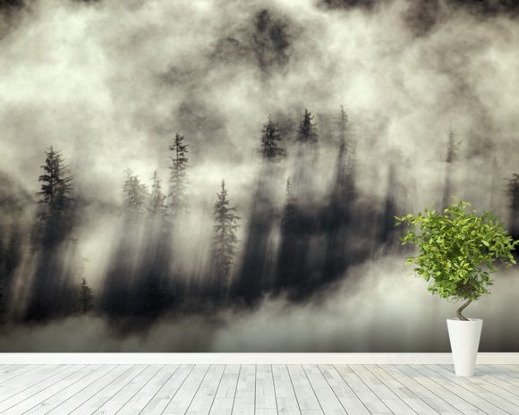 Foggy Landscape Stephens Passage Tongass National Forest wallpaper mural room setting