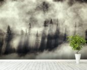 Foggy Landscape Stephens Passage Tongass National Forest wallpaper mural in-room view