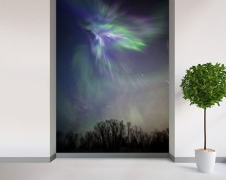 Aurora Borealis Over The Chugach Mountains wall mural