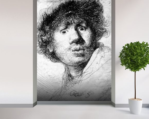 Self-portrait, 1630 (etching) wallpaper mural room setting