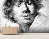 Self-portrait, 1630 (etching) wallpaper mural living room preview