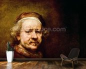 Self Portrait in at the Age of 63, 1669 (oil on canvas) (detail of 3739) mural wallpaper kitchen preview