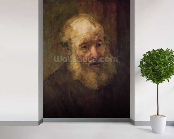 Head of an Old Man, c.1650 (oil on canvas) wall mural room setting