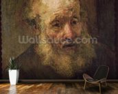 Head of an Old Man, c.1650 (oil on canvas) wall mural kitchen preview