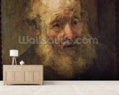 Head of an Old Man, c.1650 (oil on canvas) wall mural living room preview