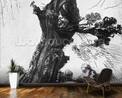 St. Jerome Writing, 1648 (etching) (b/w photo) mural wallpaper kitchen preview
