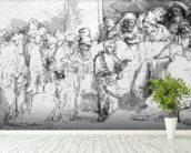 Jesus Christ among the Doctors (etching) (b/w photo) wallpaper mural in-room view
