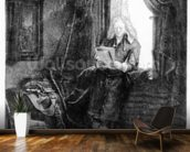 Jan Six, 1647 (etching) wallpaper mural kitchen preview