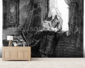 Jan Six, 1647 (etching) wallpaper mural living room preview