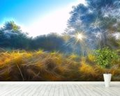 Light Golden Autumn Beams wall mural in-room view