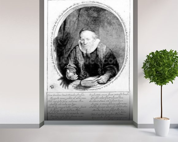 Jan Cornelisz Sylvius, 1646 (etching) wallpaper mural room setting