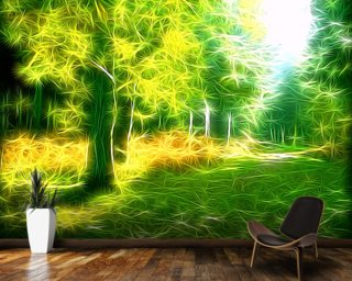Light Up Wall Mural Wall Murals Wallpaper