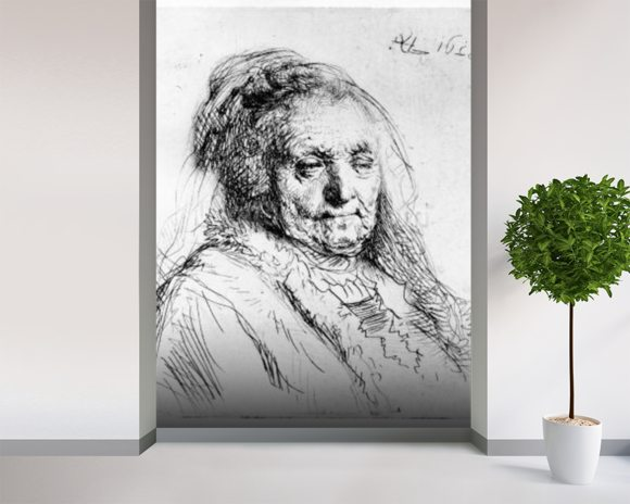 Portrait of the artists mother, 1628 (etching) wallpaper mural room setting