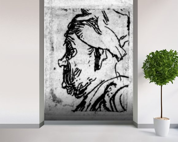 Old man with a snub nose, c.1629 (etching) wallpaper mural room setting
