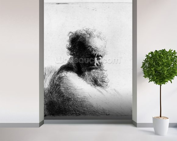 Head of an old man, 1631 (etching) wall mural room setting