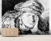 An Old Woman Sleeping, etched by Francesco Novelli, c.1790 (etching) wall mural living room preview