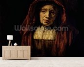 Portrait of an Old Woman mural wallpaper living room preview