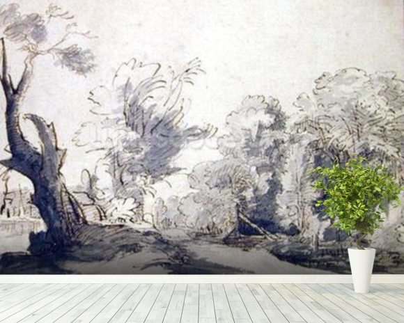 Landscape (pen and ink and wash on paper) mural wallpaper room setting