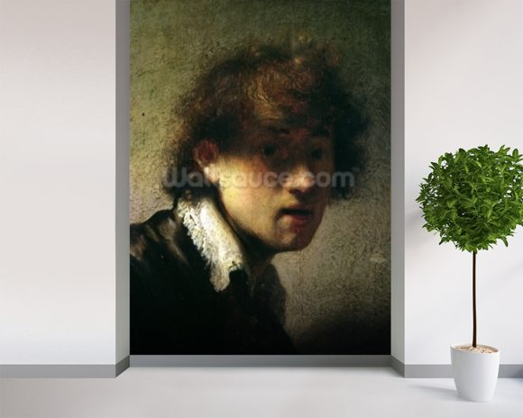 Head of a Young Man or Self Portrait, 1629 (oil on panel) wall mural room setting