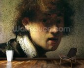 Head of a Young Man or Self Portrait, 1629 (oil on panel) wall mural kitchen preview