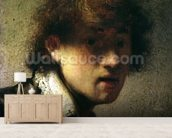 Head of a Young Man or Self Portrait, 1629 (oil on panel) wall mural living room preview