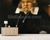 Portrait of an old man, 1667 (oil on canvas) wallpaper mural living room preview