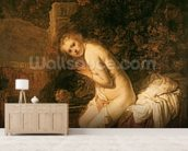 Susanna and the Elders, c.1634 (oil on panel) wall mural living room preview