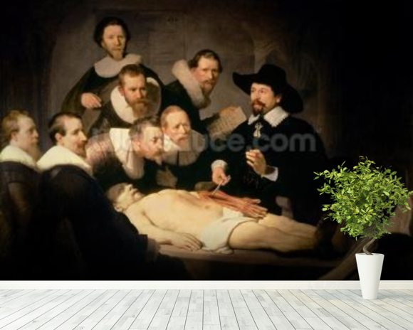 The Anatomy Lesson of Dr. Nicolaes Tulp, 1632 (oil on canvas) mural wallpaper room setting