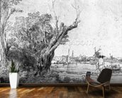 View of Omval, near Amsterdam, 1645 (etching) (b/w photo) wall mural kitchen preview