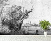 View of Omval, near Amsterdam, 1645 (etching) (b/w photo) wall mural in-room view
