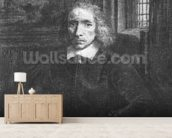 Thomas Jacobsz Haaring the Younger, 1656 (etching) (b/w photo) wallpaper mural living room preview