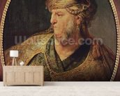 Portrait of a Man in Oriental Costume, 1633 (oil on panel) mural wallpaper living room preview