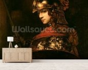 Pallas Athena or, Armoured Figure, 1664-65 (oil on canvas) wall mural living room preview