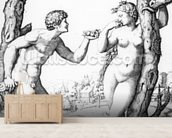 Adam and Eve, engraved by Marcantonio, c.1520 (engraving) wallpaper mural living room preview