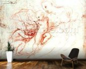 Study for the Alba Madonna, c.1508-09 (pen & ink on paper) mural wallpaper kitchen preview