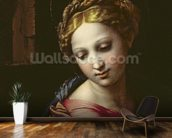 The Madonna (detail from The Holy Family (La Perla), c.1518 (oil on panel) (see 56299) mural wallpaper kitchen preview