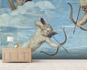 The Triumph of Galatea, 1512-14 (fresco) (detail of 56473) wall mural living room preview