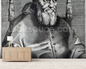 Pope Julius II (engraving) wallpaper mural living room preview