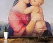 The Tempi Madonna, 1508 (oil on panel) wall mural kitchen preview