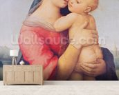 The Tempi Madonna, 1508 (oil on panel) wall mural living room preview