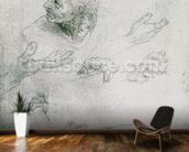 Studies for the Figure of Bramante (1444-1515) (pencil on paper) (b/w photo) mural wallpaper kitchen preview