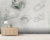 Studies for the Figure of Bramante (1444-1515) (pencil on paper) (b/w photo) mural wallpaper living room preview