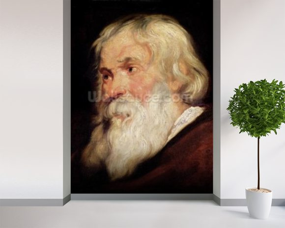 Head of an Old Man (oil on panel) mural wallpaper room setting