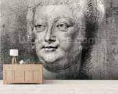 Portrait of Marie de Medici (1573-1642), 1622 ? (pierre noire and red chalk with white highlight) wall mural living room preview
