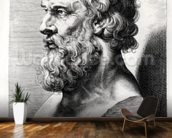 Bust of Plato (c.427-c.348 BC) engraved by Lucas Emil Vorsterman (1595-1675) (engraving) (b/w photo) mural wallpaper kitchen preview