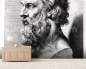 Bust of Plato (c.427-c.348 BC) engraved by Lucas Emil Vorsterman (1595-1675) (engraving) (b/w photo) mural wallpaper living room preview