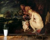 Venus Frigida, 1614 (oil on panel) wallpaper mural kitchen preview