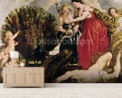 Juno and Argus, 1611 (oil on canvas) wallpaper mural living room preview