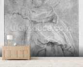 Portrait of Isabelle Helene Rubens, daughter of the artist, 1636 (pierre noire & red chalk & white highlights on brown paper) mural wallpaper living room preview